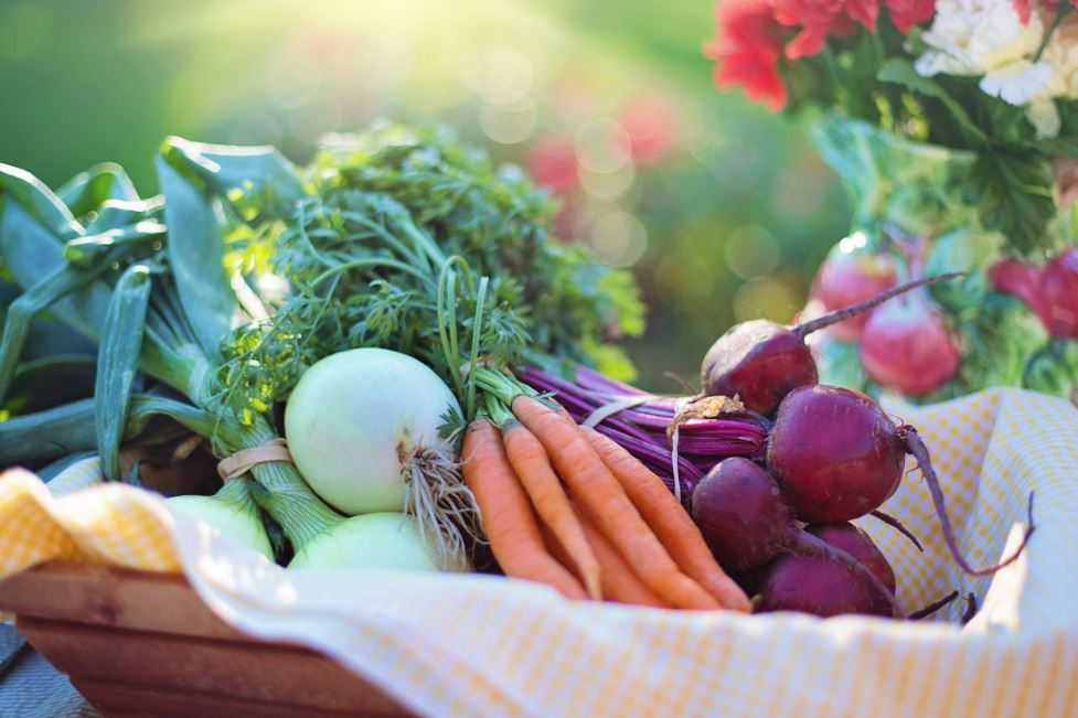 how long does it take to become a nutritionist india