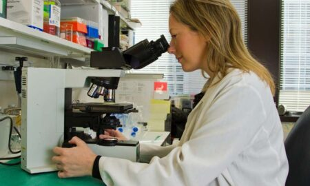biomedical research career path degree requirementsopportunities